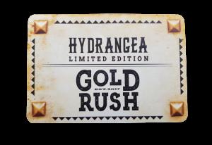 Goldrush-logo_preview